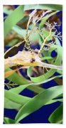 Weedy Sea Dragon Beach Towel