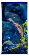 Weedy Seadragon Beach Towel