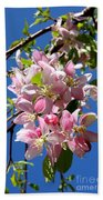 Weeping Cherry Tree Blossoms Beach Towel by Carol Groenen