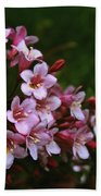 Weigela Branch Beach Towel