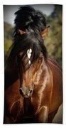 Welsh Cob Stallion Beach Towel