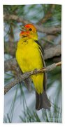 Western Tanager Singing Beach Towel