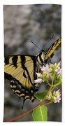 Western Tiger Swallowtail Butterfly 2 Beach Towel