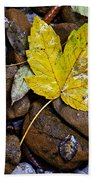 Wet Autumn Leaf On Stones Beach Towel