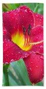 Wet Red Razzmatazz Daylily 1 Beach Towel