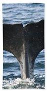 Whale Diving Beach Towel