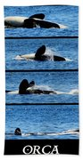 Whale Of A Time Beach Towel