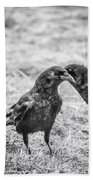 What The Raven Said Beach Towel by Susan Capuano