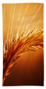 Wheat Close-up Beach Towel by Johan Swanepoel