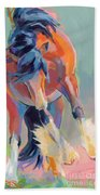 Whee Beach Towel by Kimberly Santini
