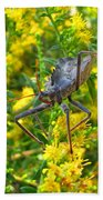 Wheel Bug  Beach Towel