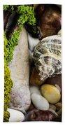 Whelk V Beach Towel