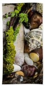 Whelk Vi Beach Towel
