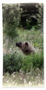 When Bears Dream Beach Towel
