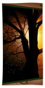 Where Have All The Flowers Gone-featured In Harmony And Happiness-naturephoto-visions Of The Night  Beach Towel
