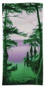 Where Swamp Meets Bay Beach Towel