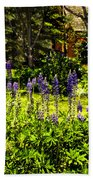 Where The Lupines Grow Beach Towel