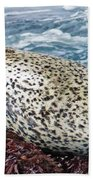 Whiskers And Spots Beach Towel