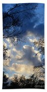 Whispers Of Winter Present Beach Towel