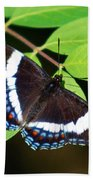 White Admiral Butterfly Beach Towel