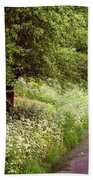 White Bloom Along The Dutch Canal. Netherlands Beach Towel