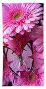 White Butterfly On Pink Gerbera Daisies Beach Towel