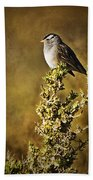 White-crowned Sparrow Beach Towel