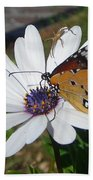 White Daisy And Butterfly Beach Towel