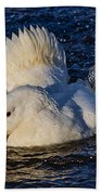 White Duck 3 Beach Towel