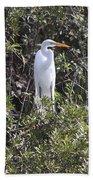 White Egret In The Swamp Beach Sheet