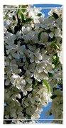 White Flowering Crabapple Tree Beach Towel