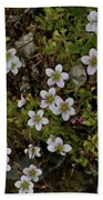White Flowers And Moss Beach Towel