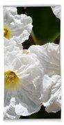 White Flowers In The Desert Beach Towel