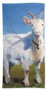 White Goat Beach Towel