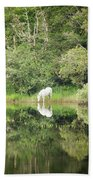 White Horse Drinking Water Beach Towel