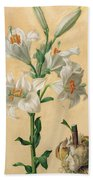 White Lily Beach Towel