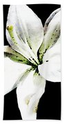 White Lily - Elegant Black And White Floral Art By Sharon Cummings Beach Towel by Sharon Cummings