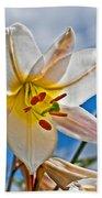 White Lily Flower Against Blue Sky Art Prints Beach Towel