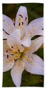 White Lily Starburst Beach Towel