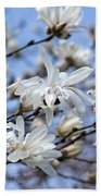 White Magnolia Magnificence Beach Towel