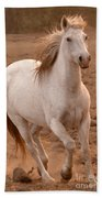 White Mare Approaches Number One Close Up Brighter Beach Towel