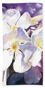 White Oleander Beach Sheet
