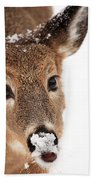 White On The Nose Beach Towel