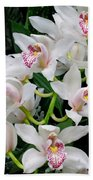 White Orchid In Full Bloom Beach Towel