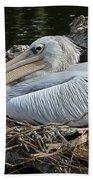 White Pelican 1 Beach Towel