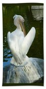 White Pelican Back Beach Towel