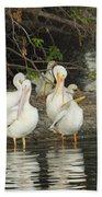 White Pelicans Grooming Beach Towel