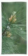 White Pine Flower N Spittle Bug Beach Towel