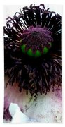 White Poppy Macro Beach Towel