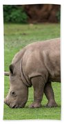 White Rhino 12 Beach Towel